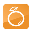 Orange outline icon Tropical fruit vector image vector image