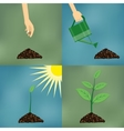 Planting process in flat design vector image vector image