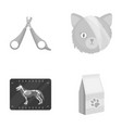 scissors cat bandage wounded vet clinic set vector image vector image