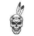 skull with indian feather vector image vector image