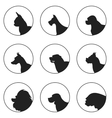 Set of silhouette dogs heads vector image