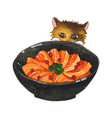 salmon sashimi bowl and cute cat peeking vector image