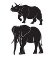 animal rhino elephant vector image