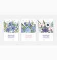 bundle card or flyer templates for herbal vector image vector image