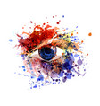 color of eye vector image vector image