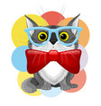 cute cat in glasses and with a bow tie vector image