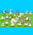 ducks and rabbits farm animal characters group vector image vector image