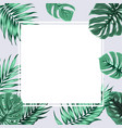 exotic tropical rectangle square border frame grey vector image vector image