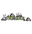four pandas by the zoo sign vector image vector image