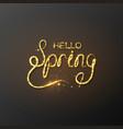 glitter golden hello spring lettering vector image