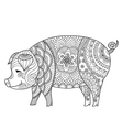 pig coloring book vector image vector image