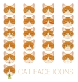 Set of cat faces vector image vector image
