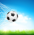 Soccer ball in goal vector image vector image