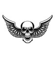 winged skull in engraving style design element vector image