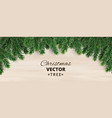 banner with christmas tree branches on vector image vector image