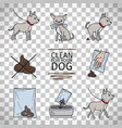 clean up after your dog information vector image vector image