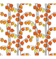 floral fall seamless pattern physalis background vector image
