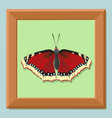 frame for the picture wooden baguette vector image vector image