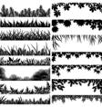 plant borders vector image vector image