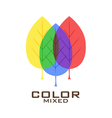 Primary color leaves logo design template vector image
