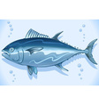 Tuna Watercolor Underwater World vector image