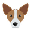 welsh corgi avatar vector image