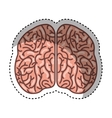 human brain organ isolated icon vector image