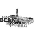 bean bag covers text word cloud concept vector image vector image