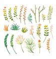 cartoon different types of plants set vector image vector image