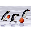 cartoon penguins jump from basketballs vector image vector image