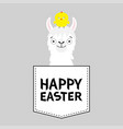 happy easter llama alpaca face head in pocket vector image vector image