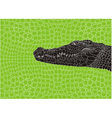 Pattern crocodile background vector image vector image