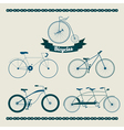 Set of Different Bicycles in Vintage Style vector image