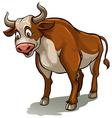 A bull vector image
