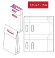 bag packaging template for wearing vector image