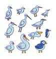 cartoon birds color set vector image