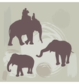 elephants silhouette on grunge background vector image vector image