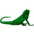 iguana vector image vector image
