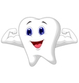 Strong tooth cartoon vector image vector image