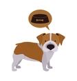 Cute dog pet vector image
