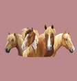 set of horses breeds 6 vector image vector image