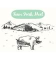 Drawn pig meadow farm fresh products sketch vector image