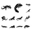 design zoo and environment icon set of vector image