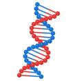 dna genetic helix gene molecule structure vector image