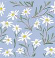 edelweiss seamless pattern alpine star vector image