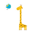 giraffe with spot flying bird zoo animal cute vector image