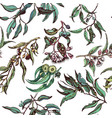 hand drawn pattern with eucalyptus succulent vector image
