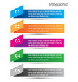 info-graphic design template vector image
