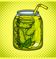 jar with pickled cucumbers pop art vector image vector image