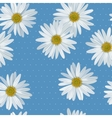Camomile seamless vector image